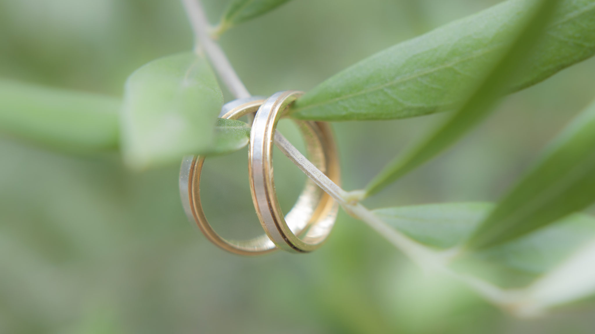 Un anneau pour les unir et dans la lumière les lier...